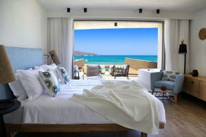 Pure Haven Room